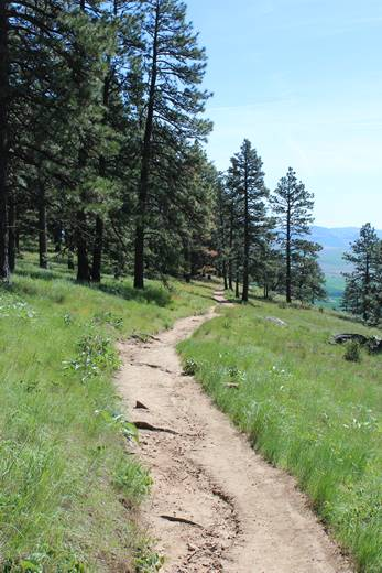 Kamiak Butte County Park Hiking Trail